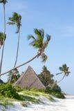 Pokrywający strzechą bungalowy na białej piaskowatej plaży otaczającej drzewko palmowe oceanem Fotografia Royalty Free