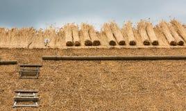 Pokrywający strzechą dach z słomą i narzędziami Obraz Royalty Free