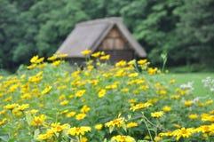Pokrywający strzechą Dachowy dom w Shirakawago, Japonia fotografia stock