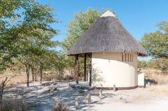 Pokrywający strzechą toaletowi udostępnienia między Namutoni i Halali Fotografia Royalty Free