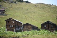 Pokut高原全景在黑海karadeniz,里泽,土耳其的 树,草 库存图片