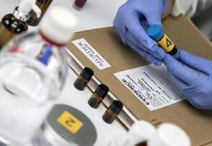 A polícia científica toma a amostra de sangue no equipamento judicial do laboratório imagens de stock royalty free