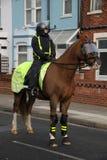 Polícia de motim montada Foto de Stock Royalty Free
