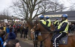 Polícia em Horseback Fotografia de Stock