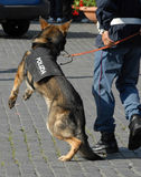 Polícia italiana Imagens de Stock Royalty Free