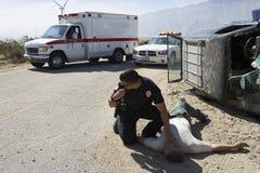 Polícia que verifica o pulso da vítima de acidente de viação foto de stock