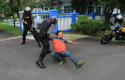 polícias imagens de stock royalty free