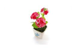 Polímero pequeno Clay Of Flowers; fundo branco Imagens de Stock Royalty Free