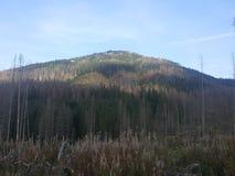 Polônia, Malopolska, montanhas de Tatra - a montagem de Wielki Kopieniec imagem de stock