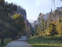 Polônia, Malopolska, montanhas de Tatra - o vale de Koscieliska fotografia de stock
