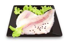 polędwicowi rybi ziele Fotografia Royalty Free