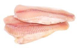polędwicowy rybi surowy Fotografia Royalty Free