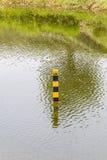 Pol för jämn indikator för vatten i den naturliga sjön som visar djupet av Arkivfoton