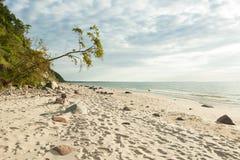 Polônia Wolin do mar Báltico Imagens de Stock