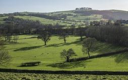 Pola, łąki i drzewa, Szczytowy okręg UK zdjęcie royalty free