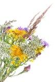 pola bukiet kwiatów Obrazy Royalty Free