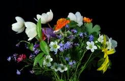 pola bukiet kwiatów Obraz Royalty Free