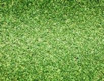 Pola Golfowe zielenieją gazon royalty ilustracja