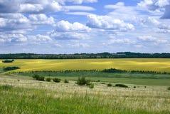 Pola i łąki, Rosja obrazy royalty free