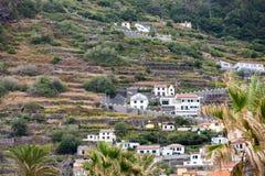 Pola i domy wzdłuż zachodniego wybrzeża blisko Porto Moniz na madery wyspie Obraz Stock