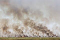 Pola ogień Fotografia Stock