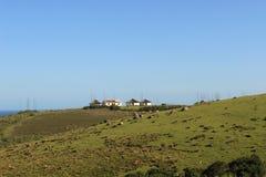 Pola trawa i tradycyjne członek ludu khosa budy, afrykanina krajobraz w wschodnim przylądku, południowy Africa, dziki wybrzeże Zdjęcie Stock