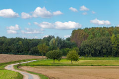 Pola w Flanders Belgium obrazy stock