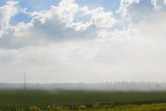 Pola w mgle Obrazy Royalty Free