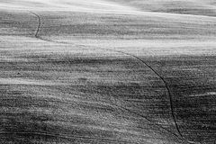 Pola w Tuscany Włochy na curvy wzgórzach obraz stock
