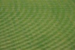 pola zewnętrzn petco park na stadionie Obraz Royalty Free