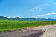 pola zielone niebo niebieskie obraz royalty free