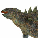 Polacanthus Dinosaur Head. Polacanthus was an armored herbivorous dinosaur that lived in Europe during the Cretaceous Period Royalty Free Stock Image