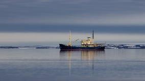 Polair ijs driftof de Spitsbergen-archipel stock foto's