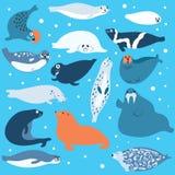 Polaire dieren vector illustratie