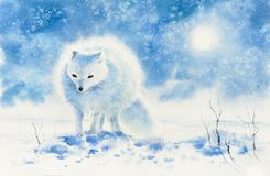 Polaire geschilderde voswaterverf Stock Foto