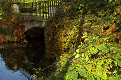 Poland.Autumn.The historic bridge overgrown with vegetation Royalty Free Stock Photography