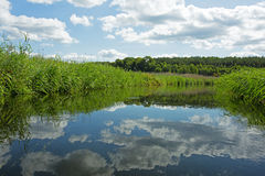 Poland.Brda river in summer.Horizontal view. Poland in summer.Pomerania.Horizontal view on the Brda river.Clouds beautifully reflected in the water.Nature Royalty Free Stock Photography