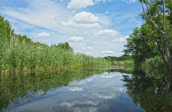Poland.Brda river in summer.Horizontal view. Poland in summer.Pomerania.Brda river.Wild and unregulated river flowing picturesquely among the fields, meadows and Stock Photo