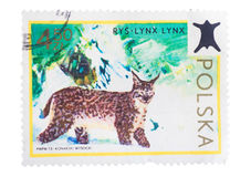 POLAND - CIRCA 1973: A stamp printed in from the Forest Royalty Free Stock Images