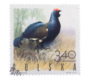 POLAND - CIRCA 1970: a stamp printed in the series of Stock Image