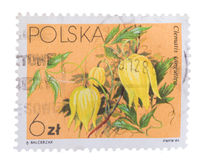 POLAND - CIRCA 1984: A stamp printed in showing Chinese C royalty free stock photos