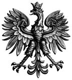 Poland eagle. On white background in vector format Stock Image
