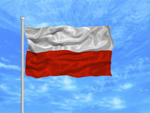 Poland Flag 1 Stock Image
