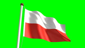 Poland flag stock video