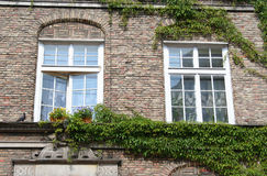 Poland. Gdansk city. Windows. Of old houses Royalty Free Stock Photo