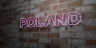 POLAND - Glowing Neon Sign on stonework wall - 3D rendered royalty free stock illustration Royalty Free Stock Photography