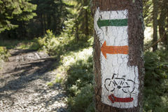 Poland, Gorce Mountains, trail blazing marks Stock Photography