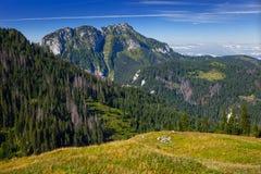 Poland mountains Stock Photo