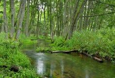 Poland.Pomerania.Kulawa river in summer.Horizontal view Stock Images
