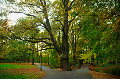 Poland, Poznan. Park Sołacki autumn Stock Photo